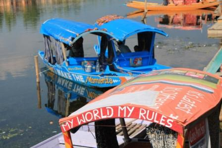 my world my rules