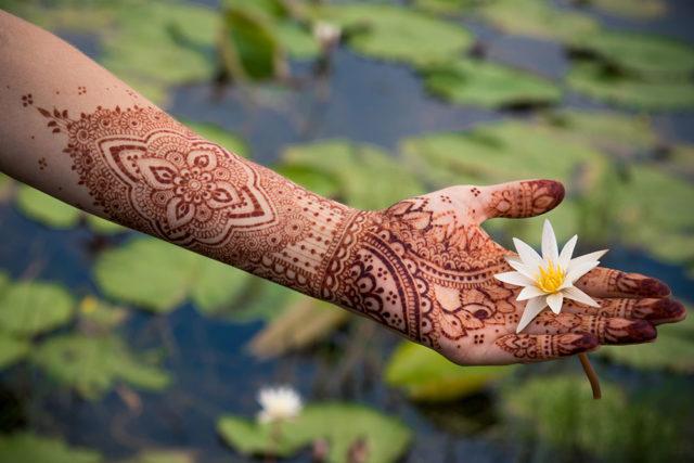 pielęgnacja henny